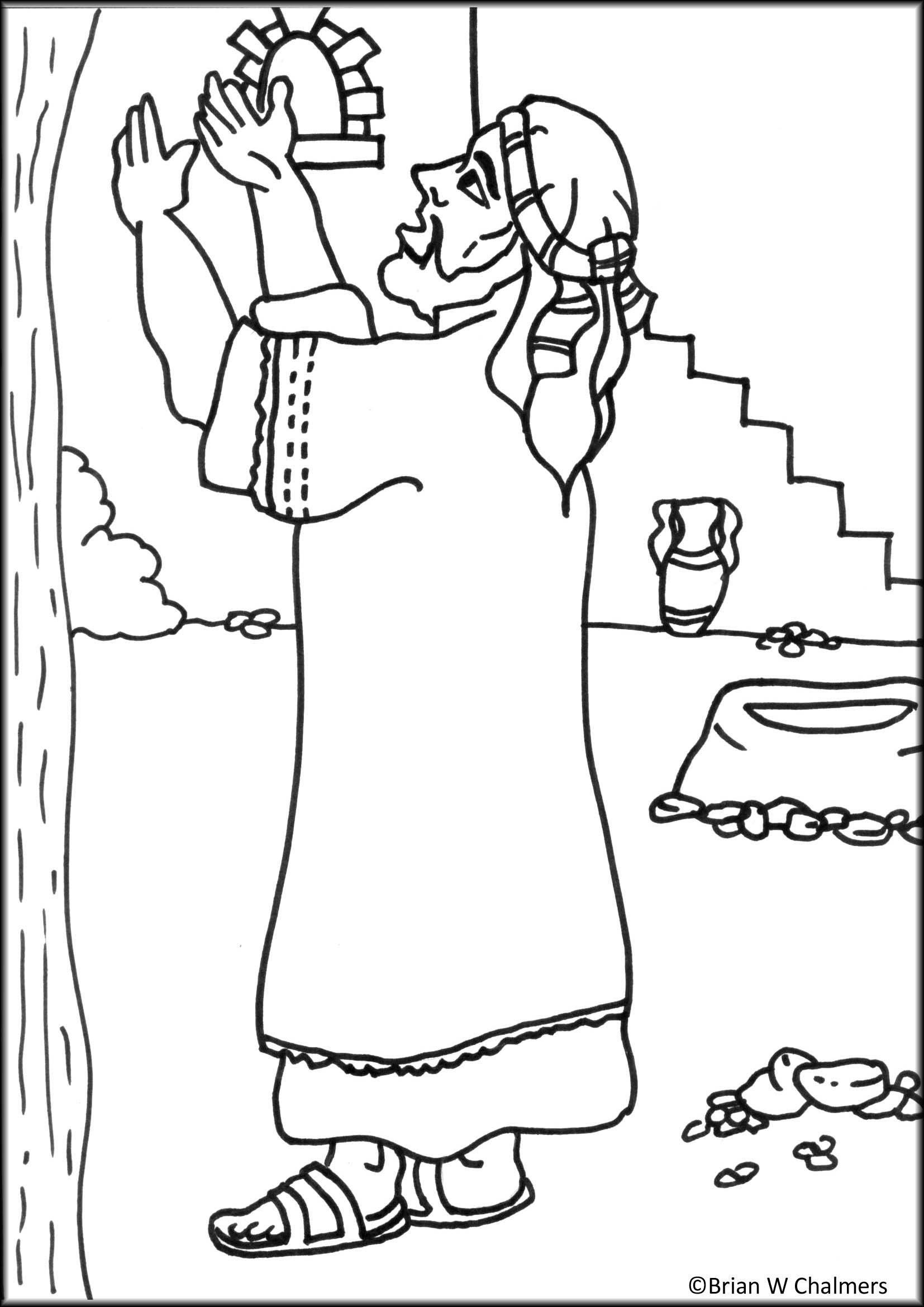 coloring pages on zacchaeus - photo#31