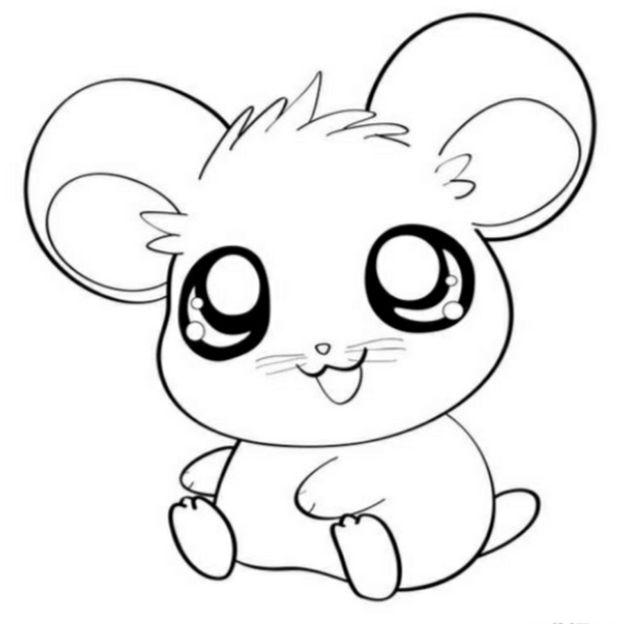 37 Best Cute Hamster Coloring Pages for You - VoteForVerde.com