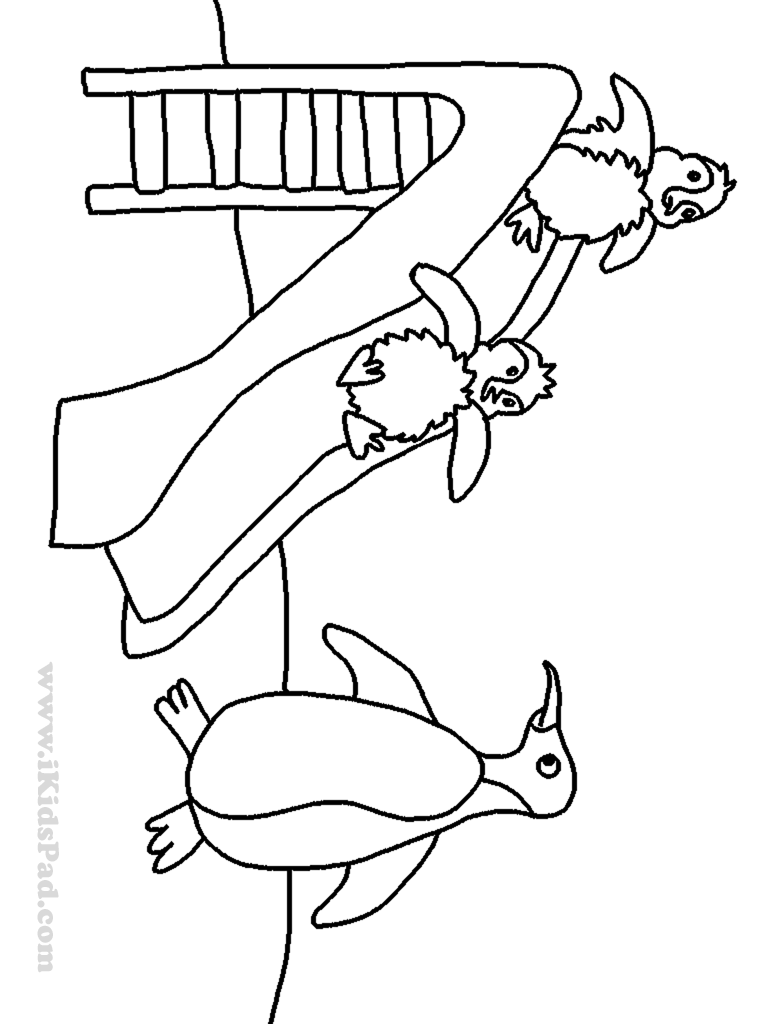 Water Slide Coloring Page Coloring