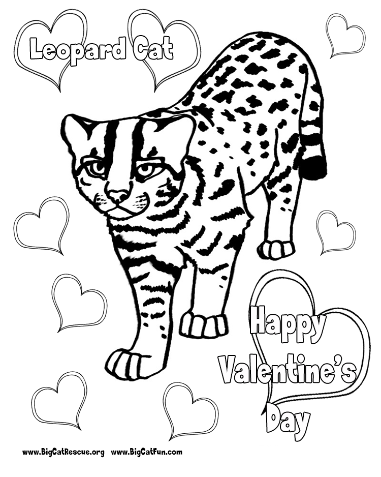 Cartoon Snow Leopard Coloring Pages