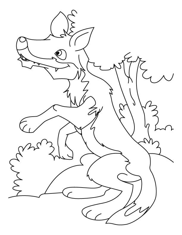 wolf colouring pages. for the love of preschool mini theme ...