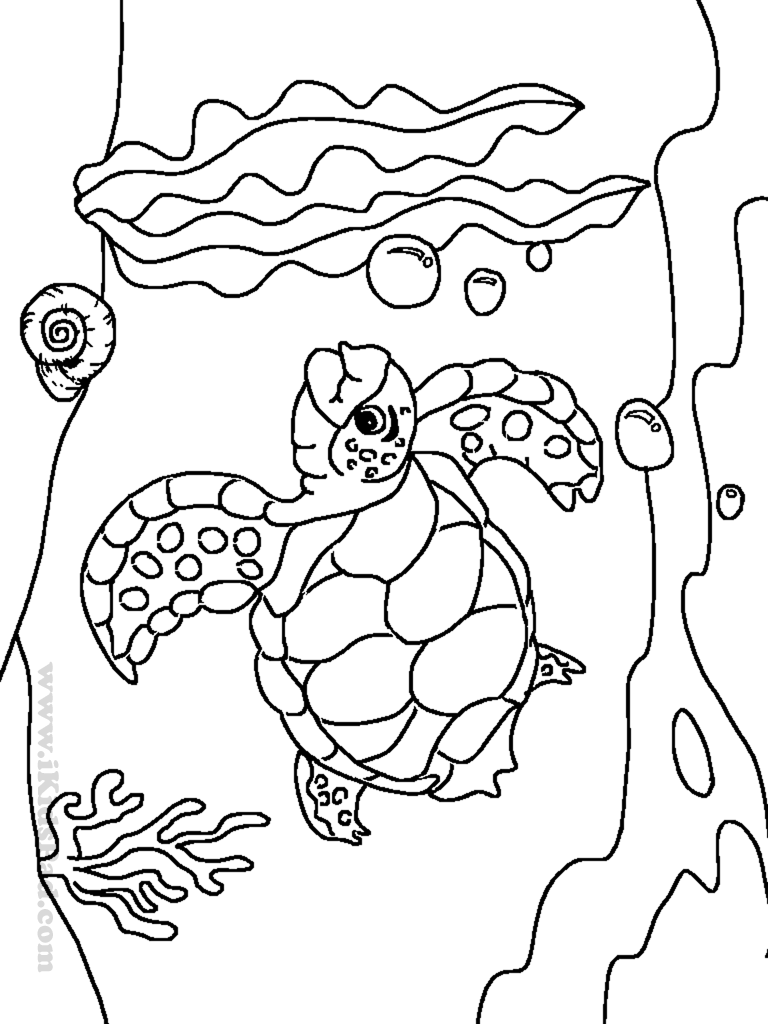 Baby Sea Turtles Coloring Pages