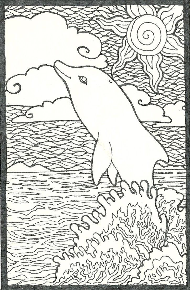 Coloring Pages For Adults Dolphins 4