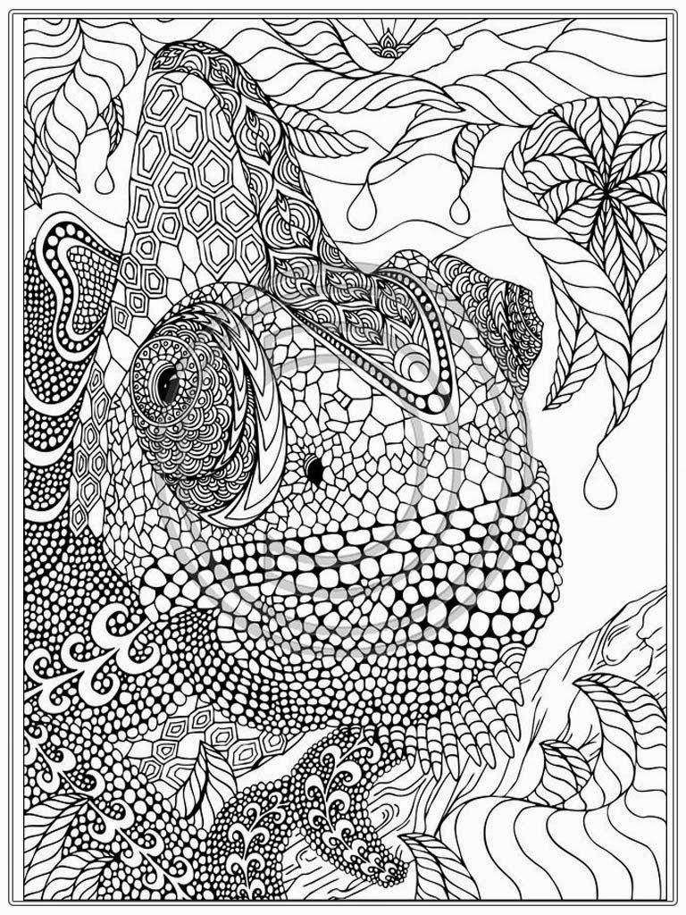 Printable Iguana Adult Coloring Pages | Realistic Coloring Pages