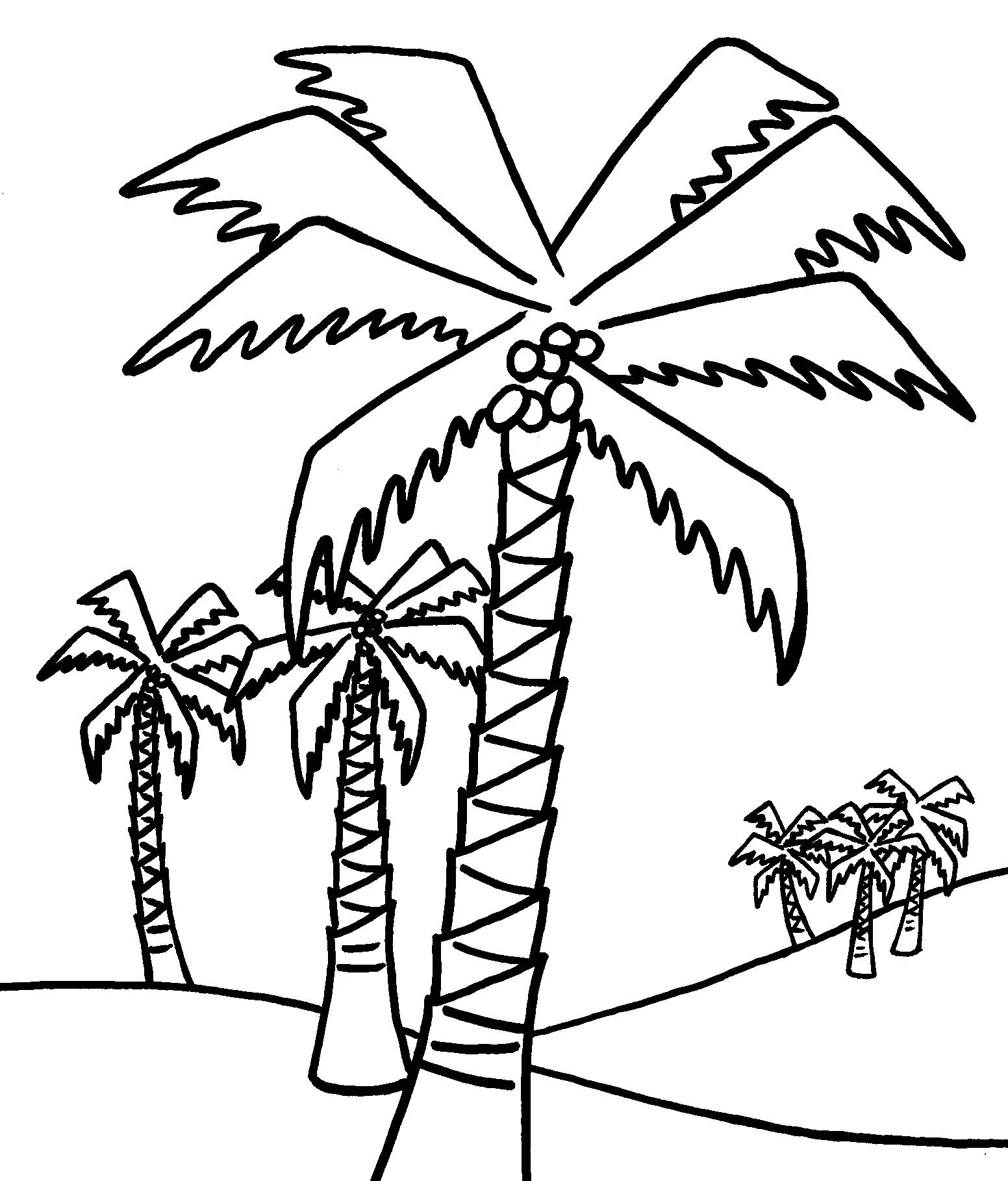 palm tree printable coloring pages | Palm Tree Coloring Pages For Kids - Coloring Home