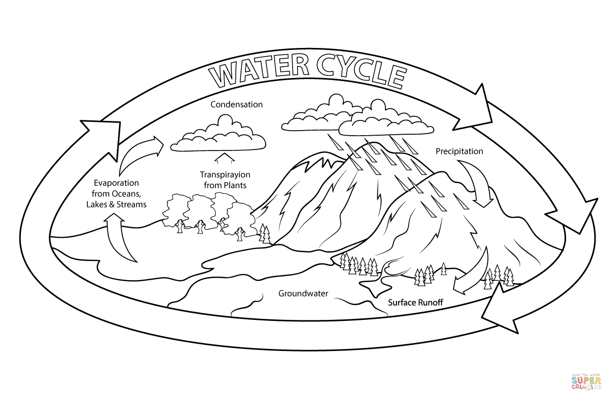 Coloring sheet rock cycle - Water Cycle Coloring Page Free Printable Coloring Pages