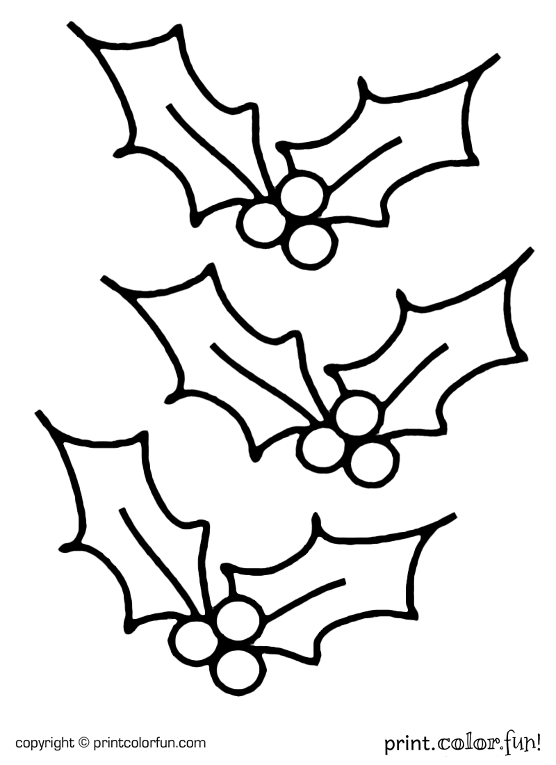 coloring pages holly - photo#2