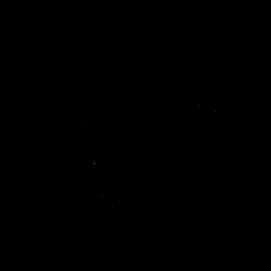 Meerschweinchen Ausmalbild / Malvorlage Meerschweinchen