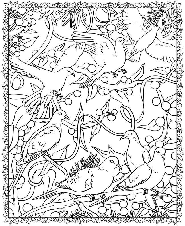 free dover coloring pages - photo#12