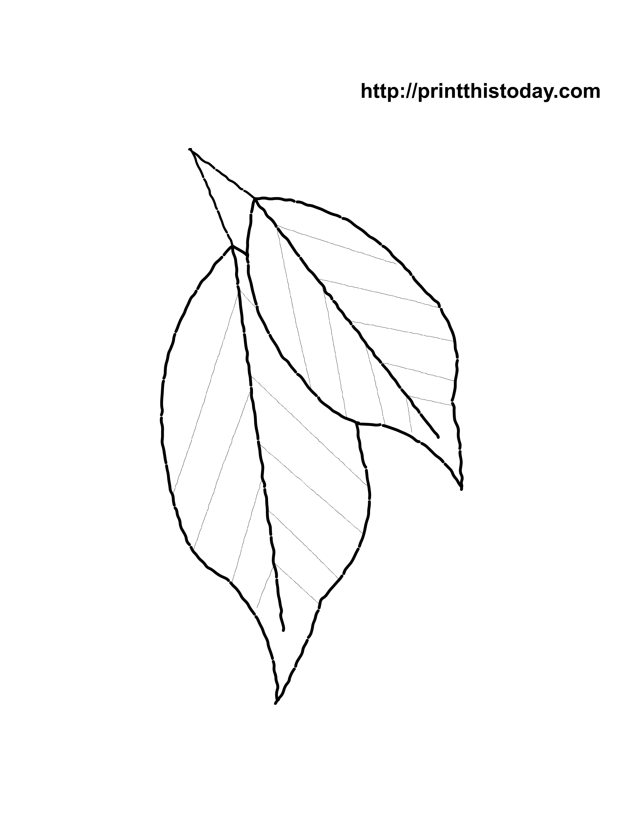 large coloring pages of leaves - photo#32