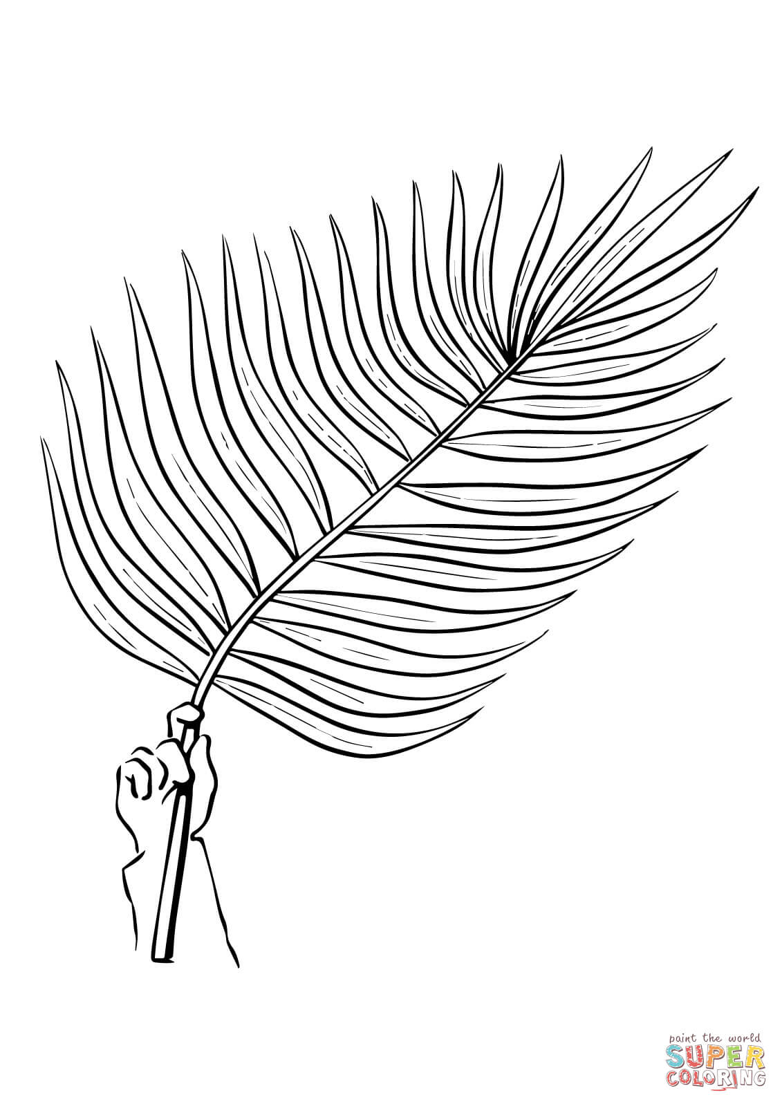 Palm Branch Coloring Page Coloring