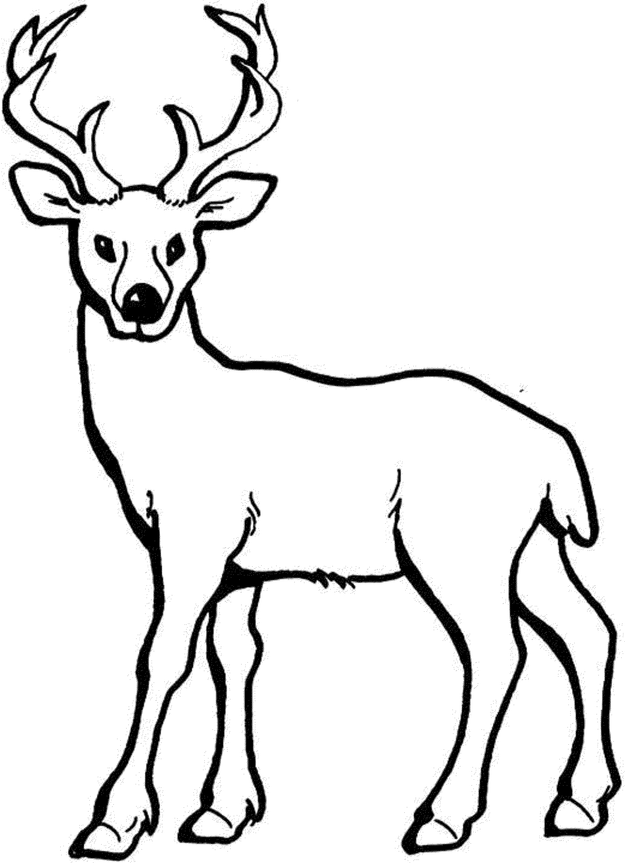 deer coloring pages print - photo#7