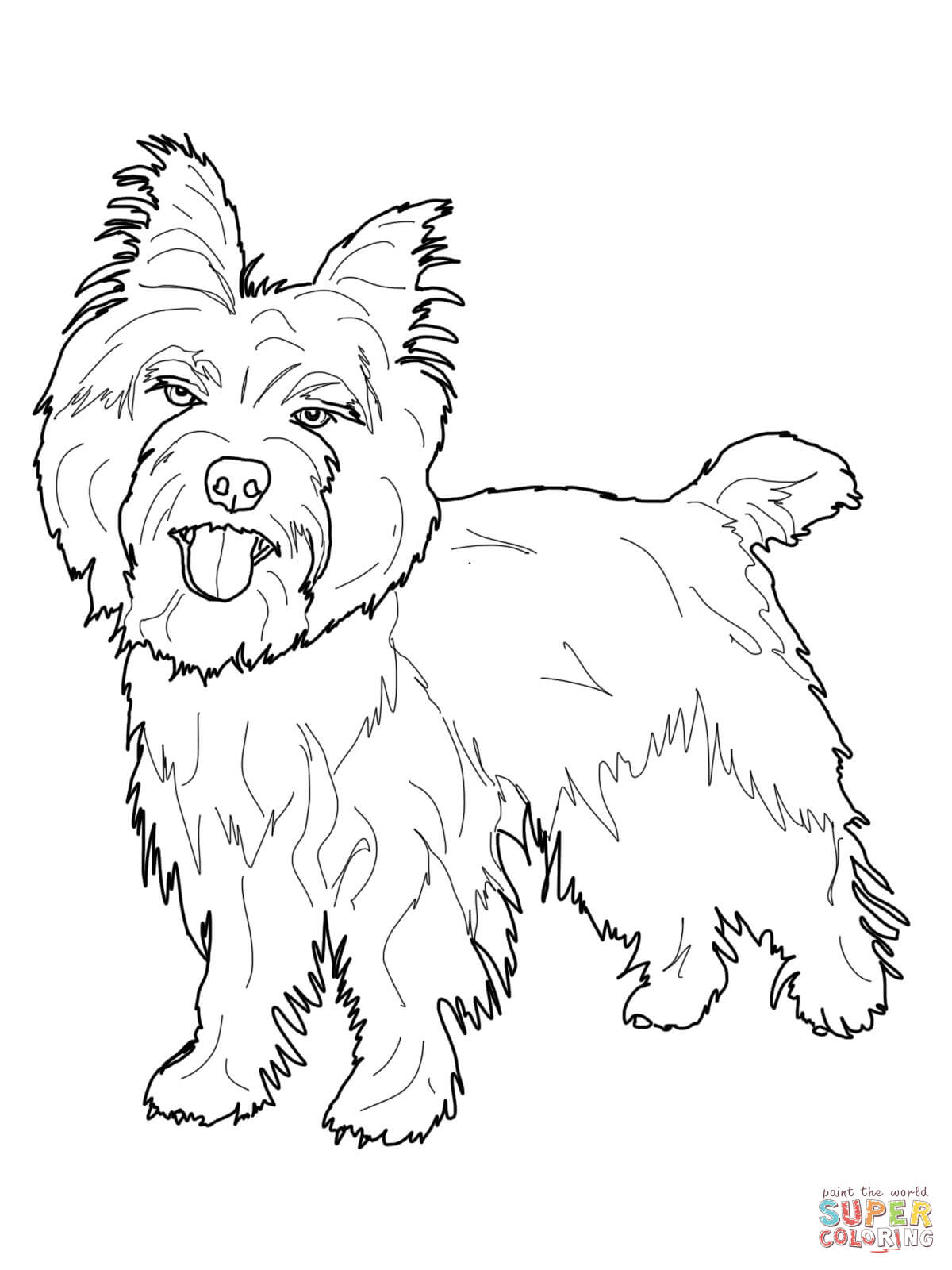 Cairn Terrier coloring page | Free Printable Coloring Pages