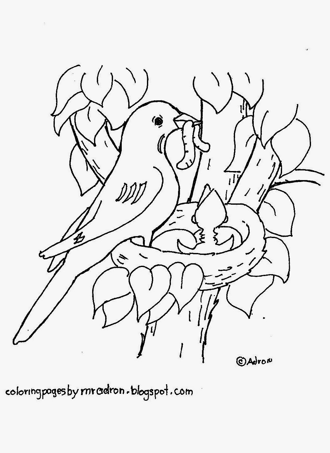 Coloring Pages for Kids by Mr. Adron: Robin In Nest Free Coloring Page