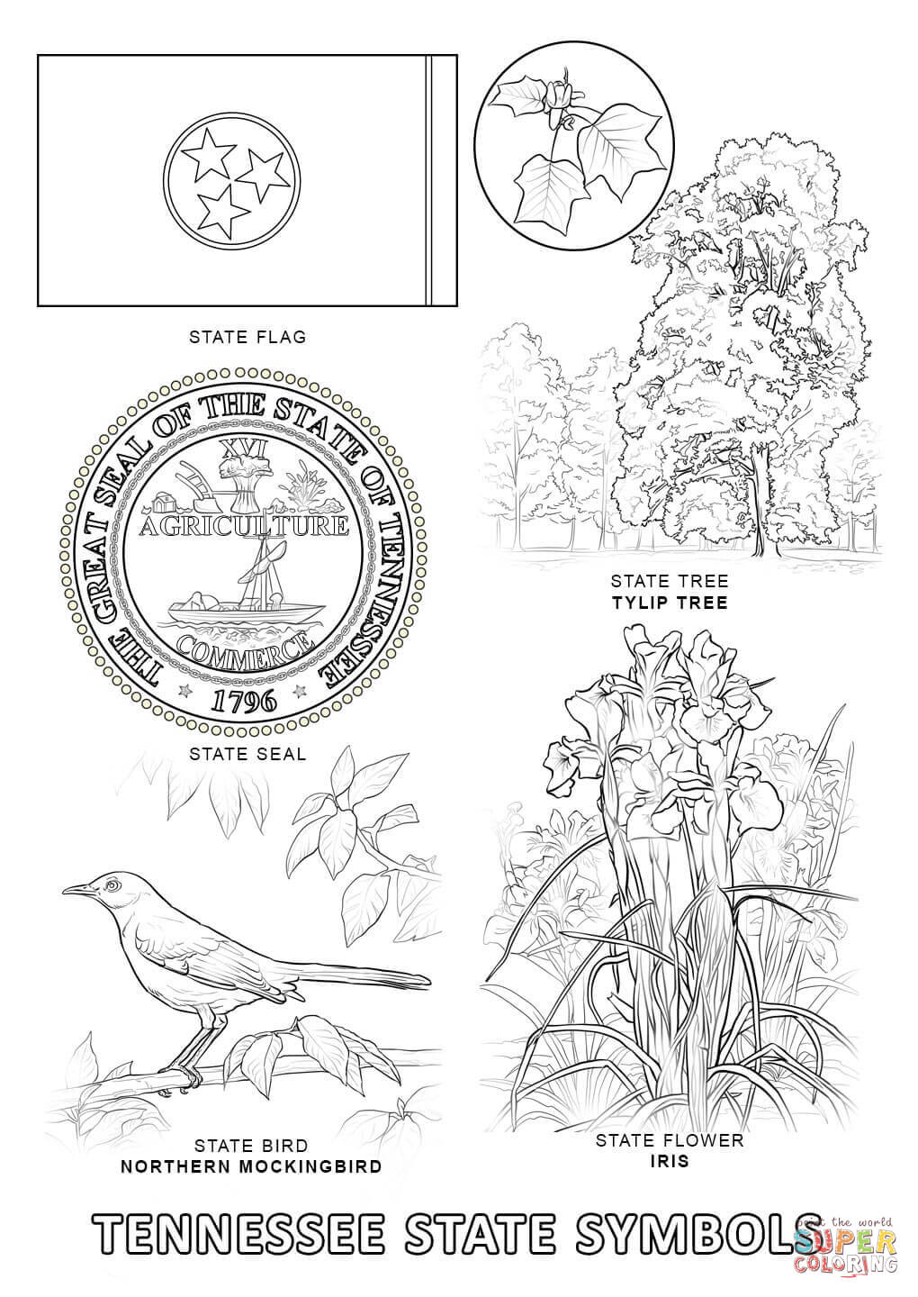 Tennessee State Symbols coloring page | Free Printable Coloring Pages
