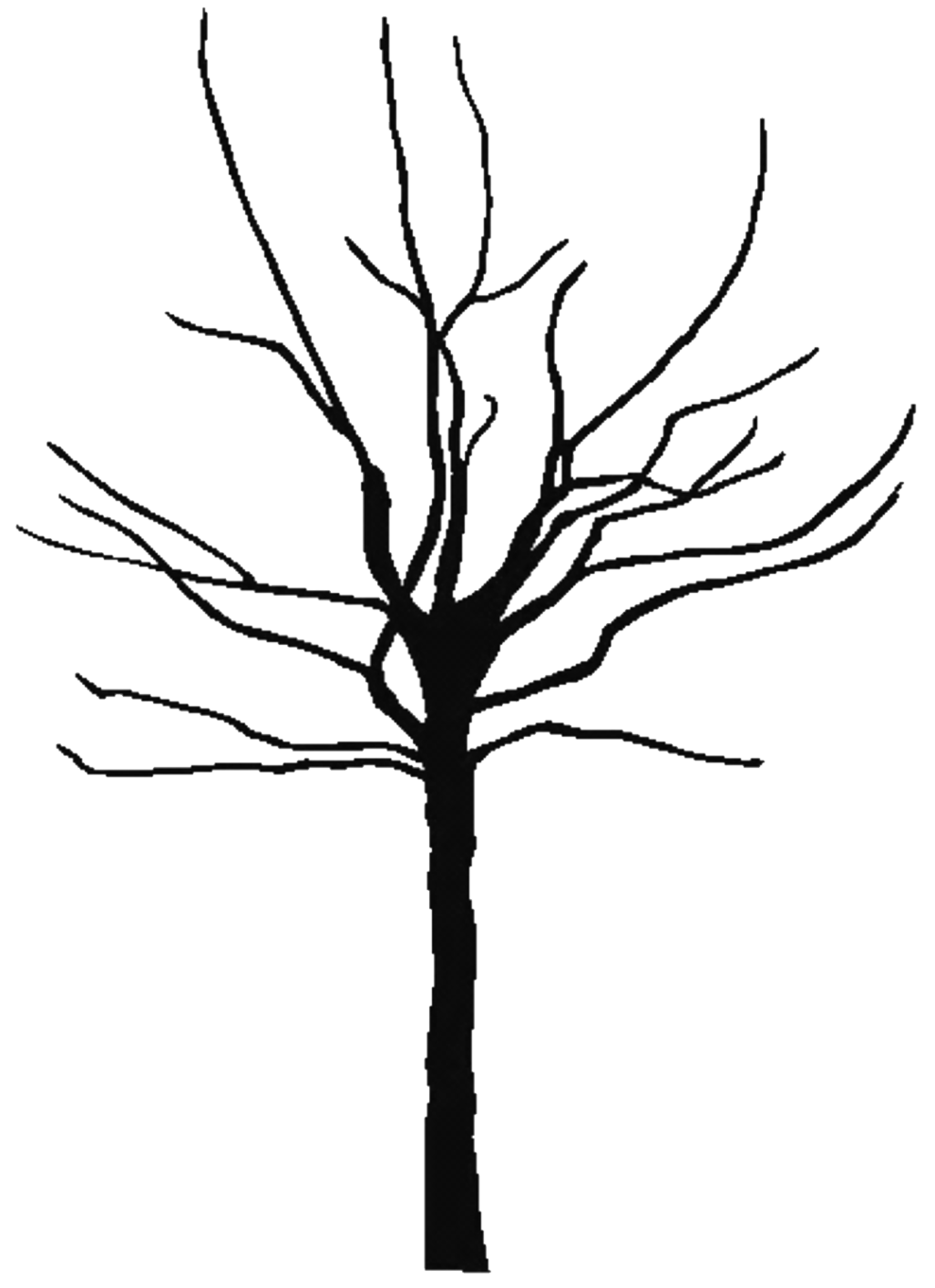 bare tree coloring pages - photo #14