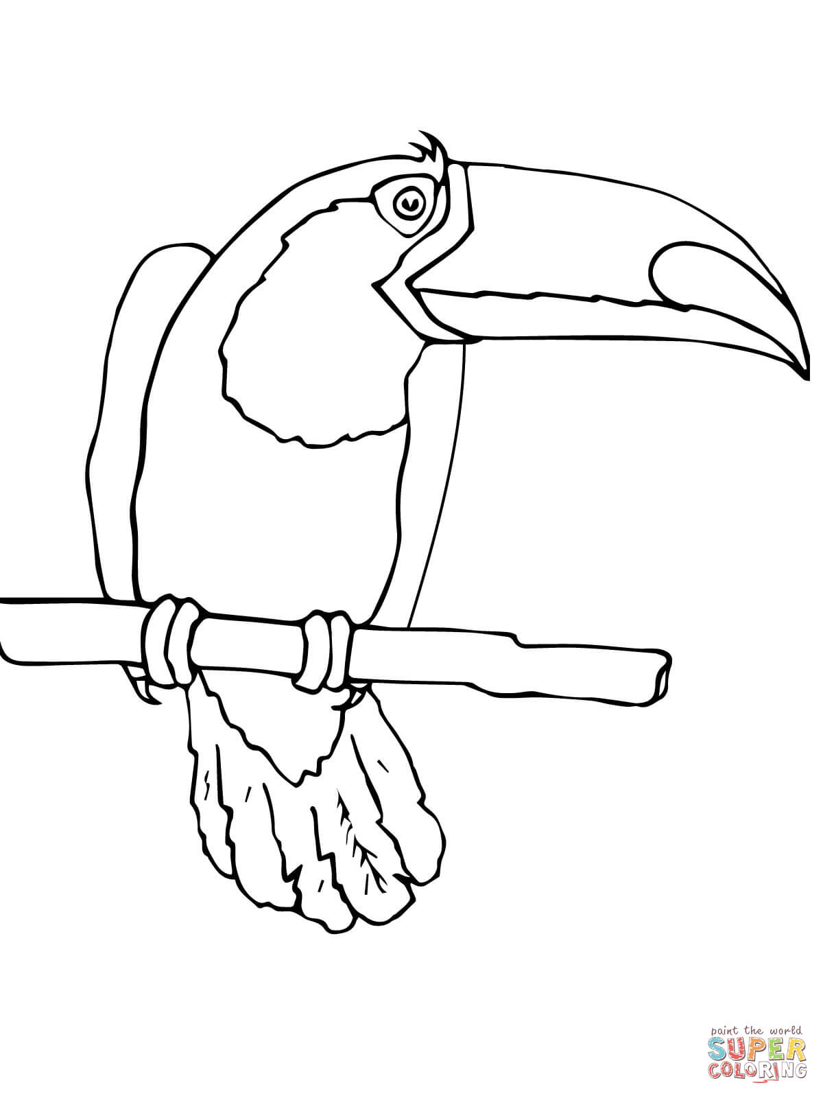 Toucan Coloring Page - Coloring Home