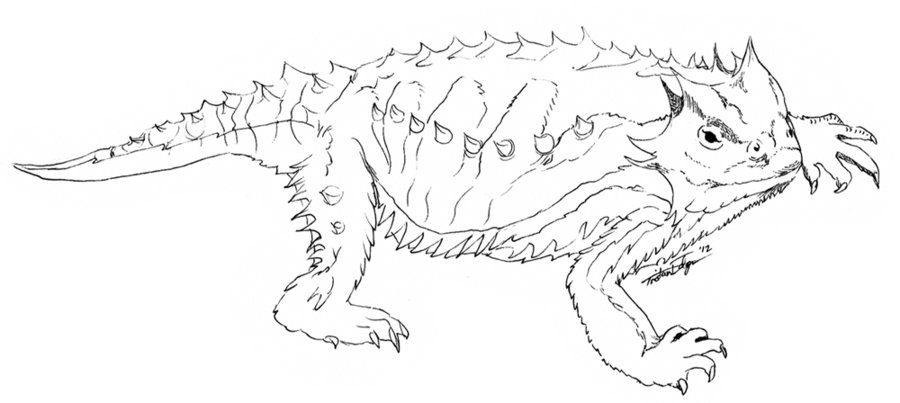 Horned Lizard Coloring Page - Coloring Home