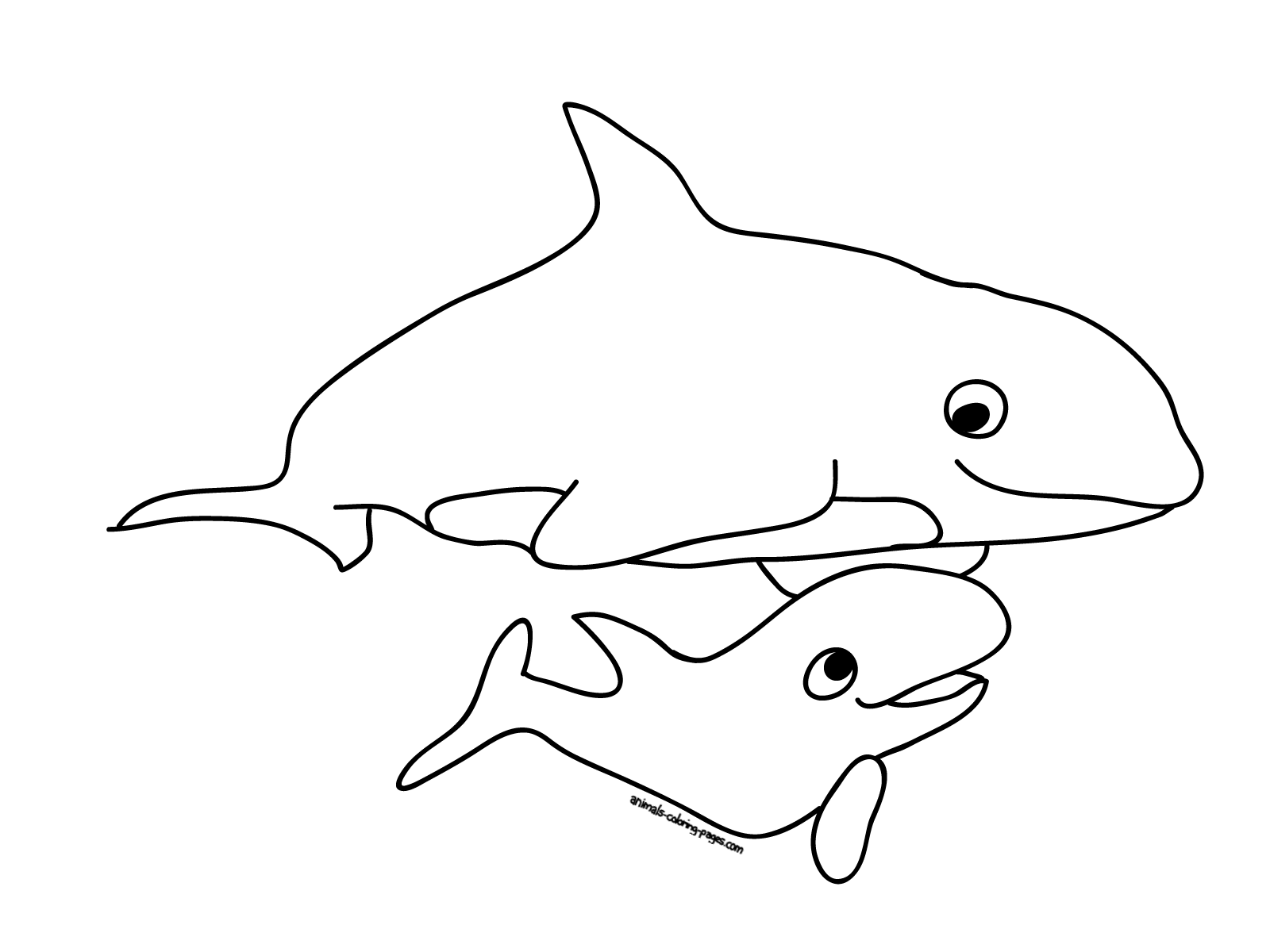 Coloring pages whales - 44 Best Whales Coloring Pages Gianfreda Net