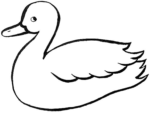 Duck Outline  Coloring Home