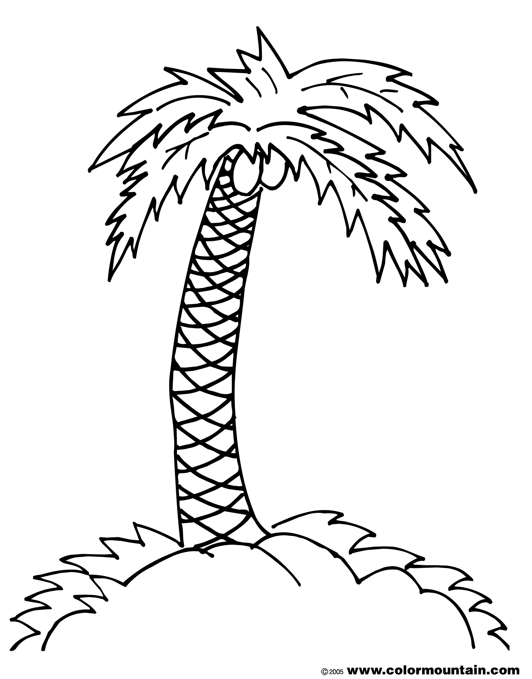 free palm leaves coloring pages - photo#29