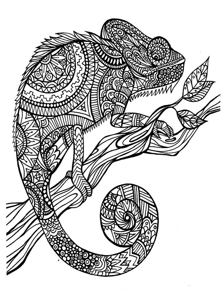 Detailed Animal - Coloring Pages For Kids And For Adults - Coloring Home
