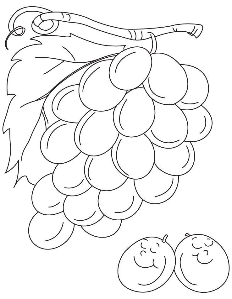 Grapes are not always sour coloring pages | Download Free Grapes