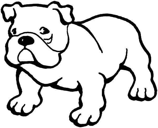 printable and coloring pages bulldog - photo#38