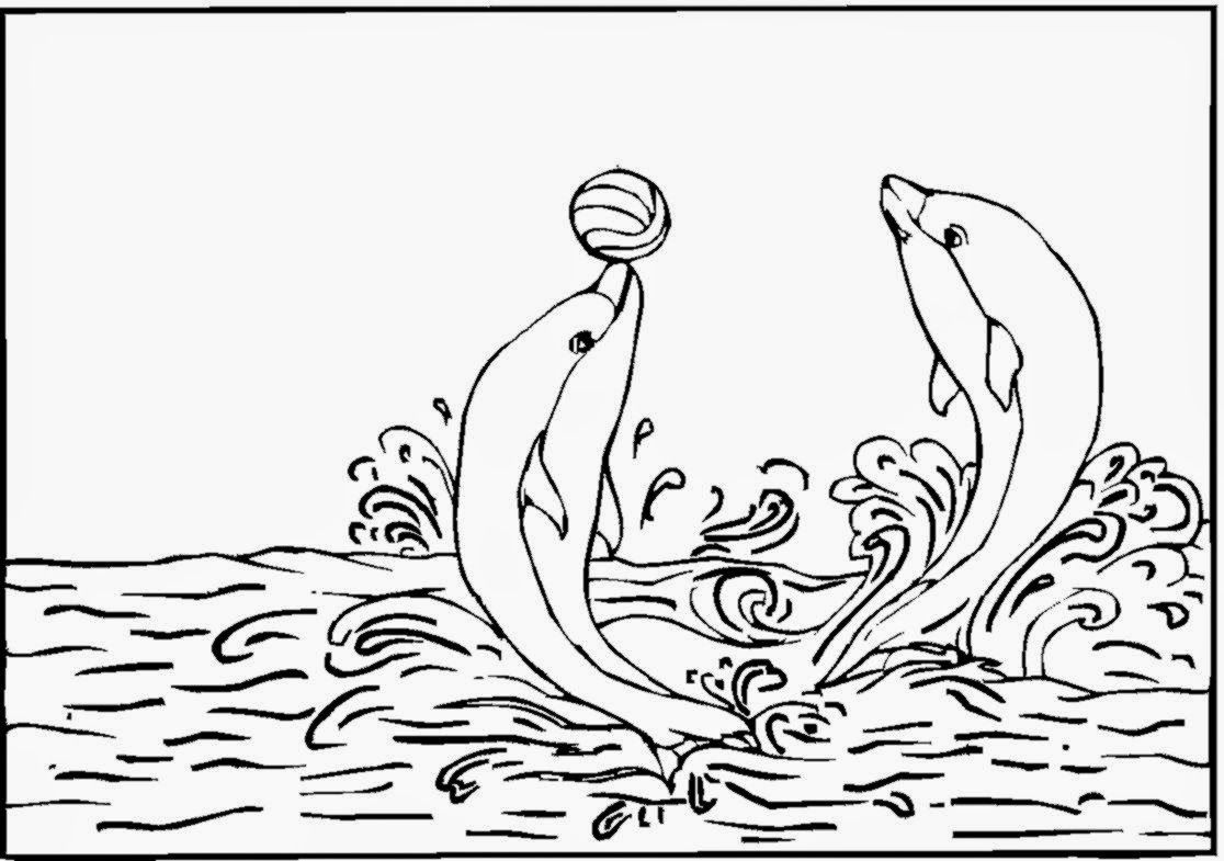 - Coloring Pages For Adults Dolphins - Coloring Home