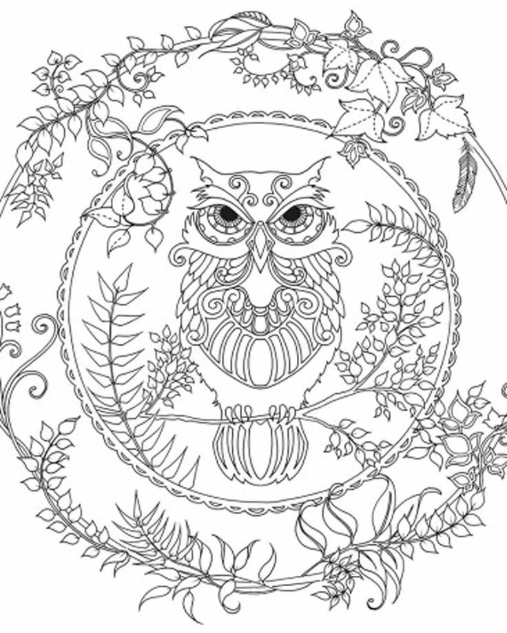 Enchanted Forest Owl Free Printable Coloring Pages