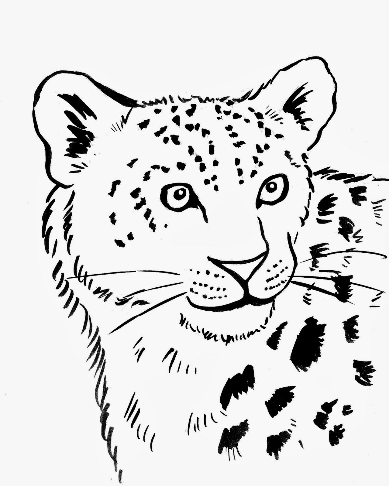 Leopard drawing for kids