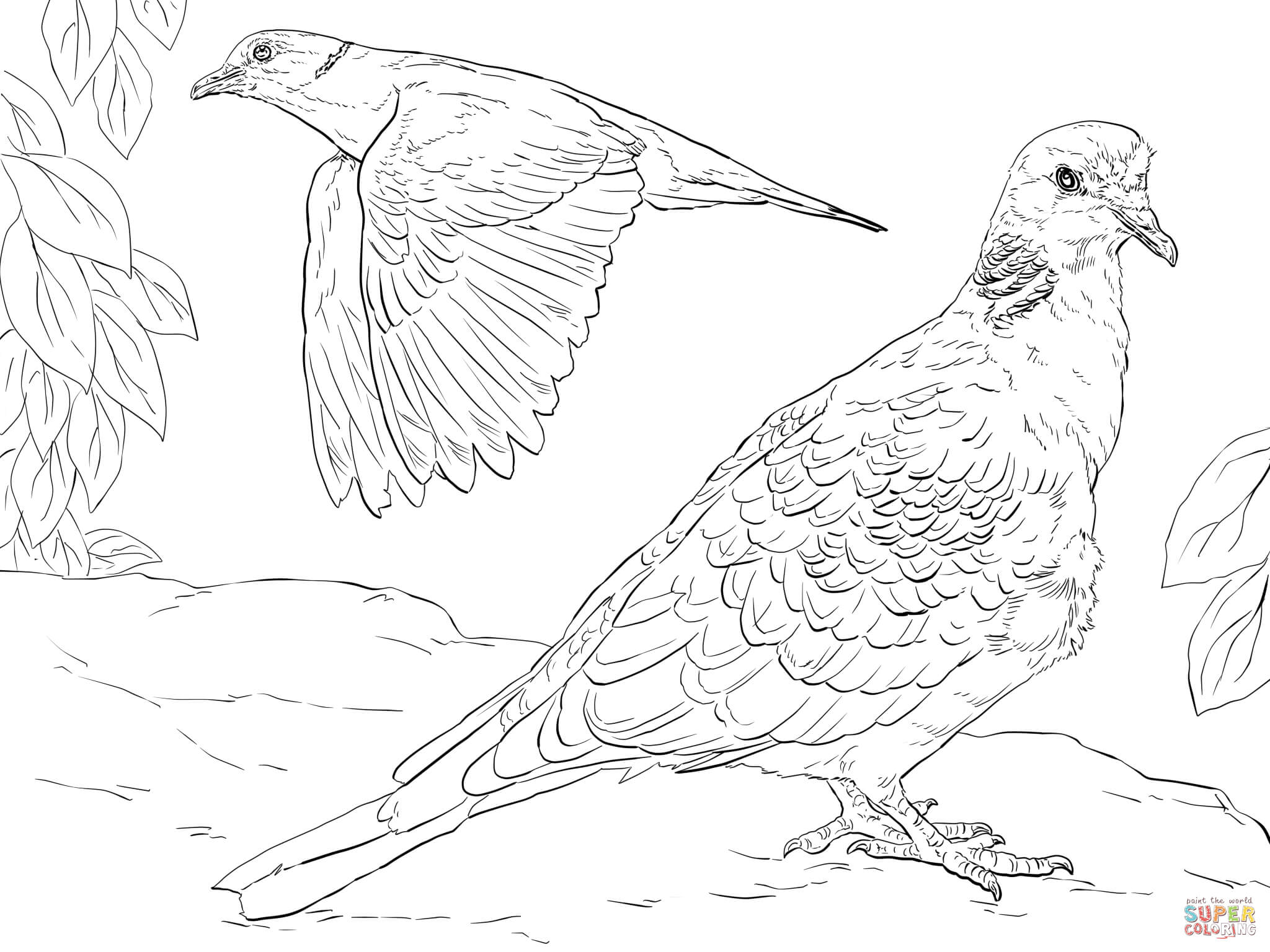 Turtle doves coloring pages coloring home for Dove cameron coloring pages