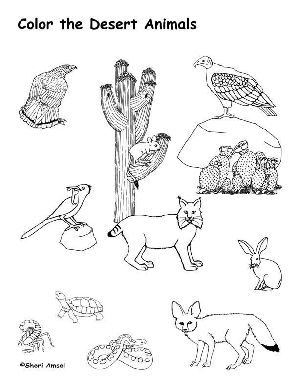 african savanna coloring pages - african savanna coloring pages preschool coloring pages