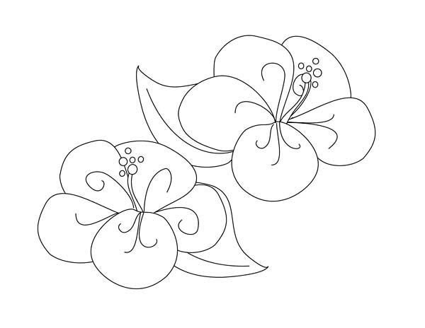 Fancy gem page coloring pages for Gem coloring pages