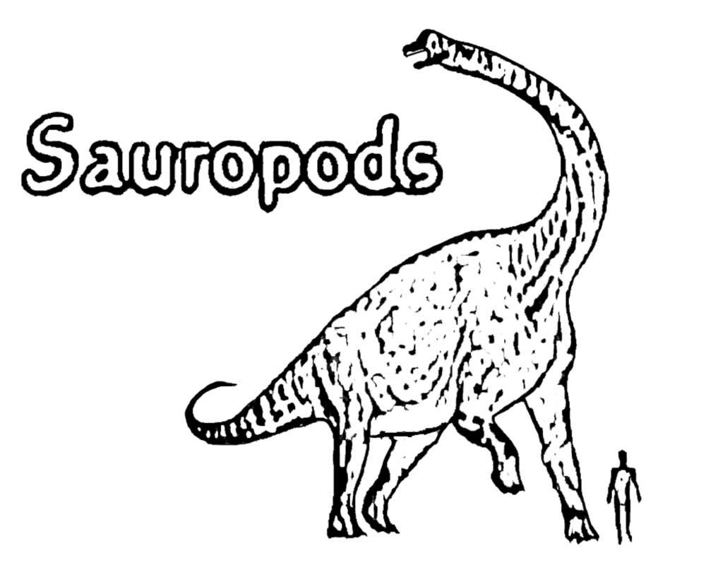 long neck dinosaur coloring page coloring home. Black Bedroom Furniture Sets. Home Design Ideas