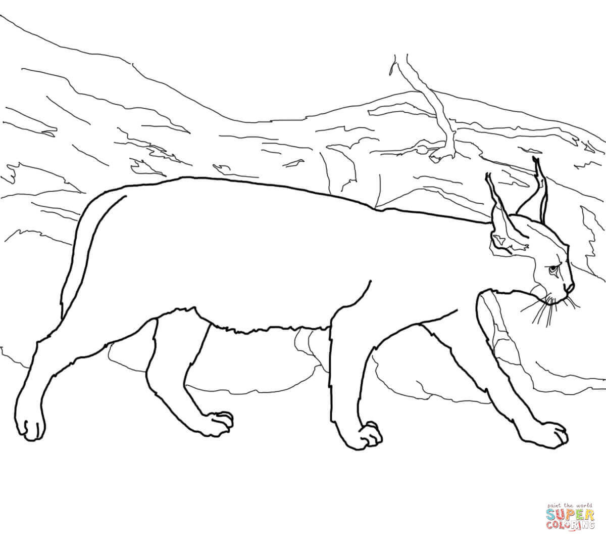 Caracals coloring pages | Free Coloring Pages