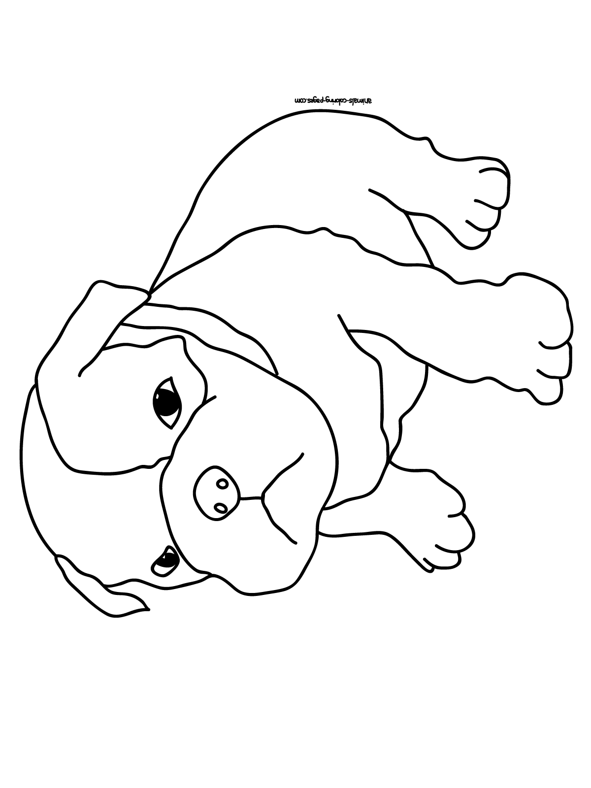 Baby Pug Coloring Pages Printable