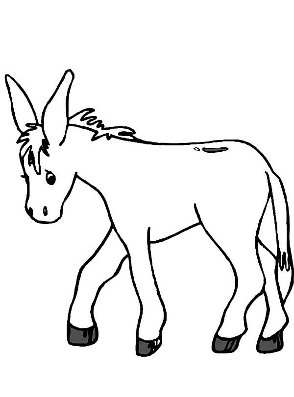 Donkeys coloring pages coloring home for Donkey coloring pages free