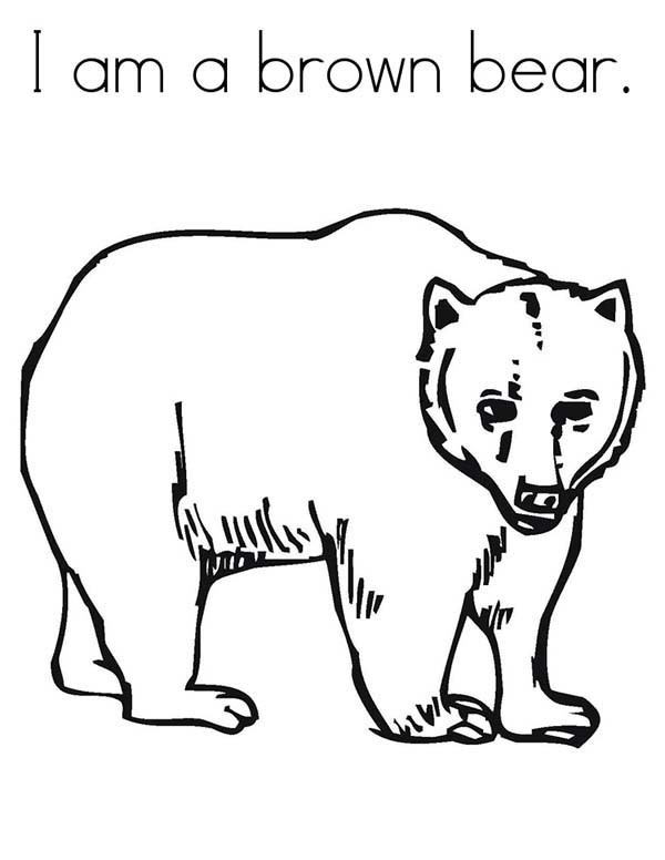 I Am A Brown Bear Coloring Pages  Best Place To Color  Coloring Home