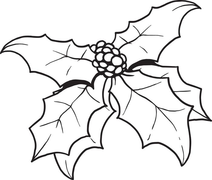 Holly Coloring Pages - Best Coloring Pages For Kids | 594x700