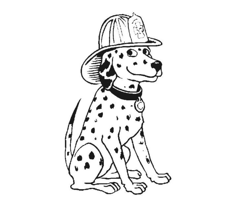 Dalmation Coloring Pages : Dalmatian Fire Dog Coloring Pages