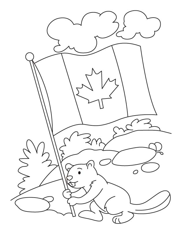Happy beaver celebrating the Canada day coloring pages | Download