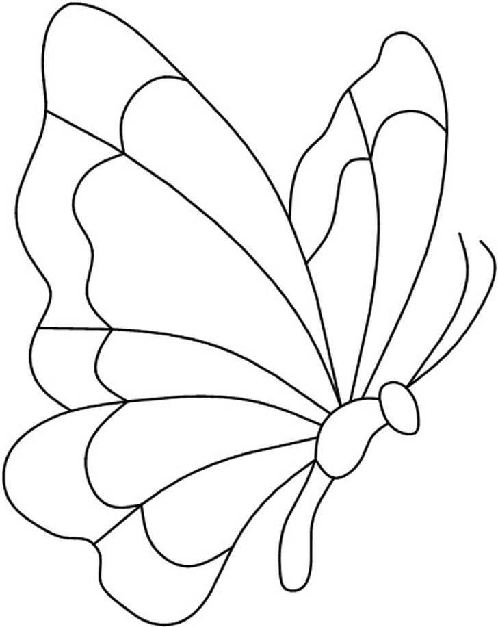 Outline Of A Butterfly - Coloring Home