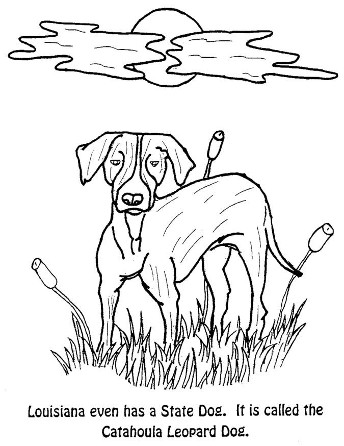 Florida state flag coloring page coloring home for Florida flag coloring page