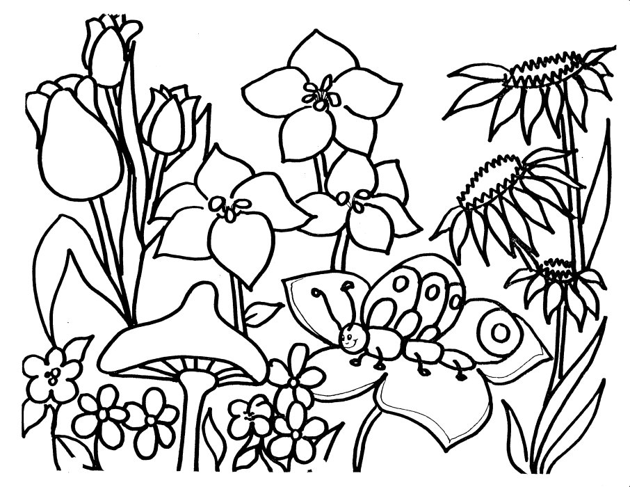 Drawings for kids to color az coloring pages for Flower garden coloring pages printable