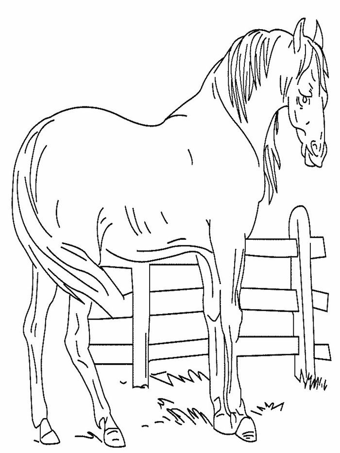 Mustang horse coloring pages az coloring pages for Mustang horse coloring pages printable