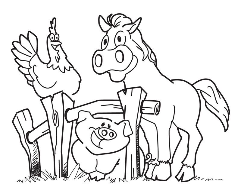 Farm animal color pages coloring home for Farm animal coloring pages