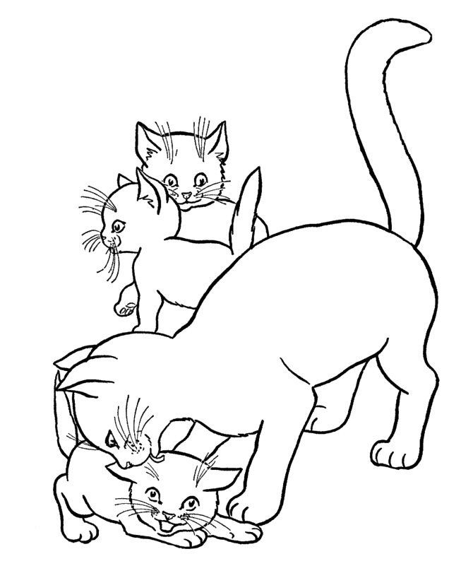 Mother Cat And Kittens Coloring Pages Mother Mary Saints Day Amulet