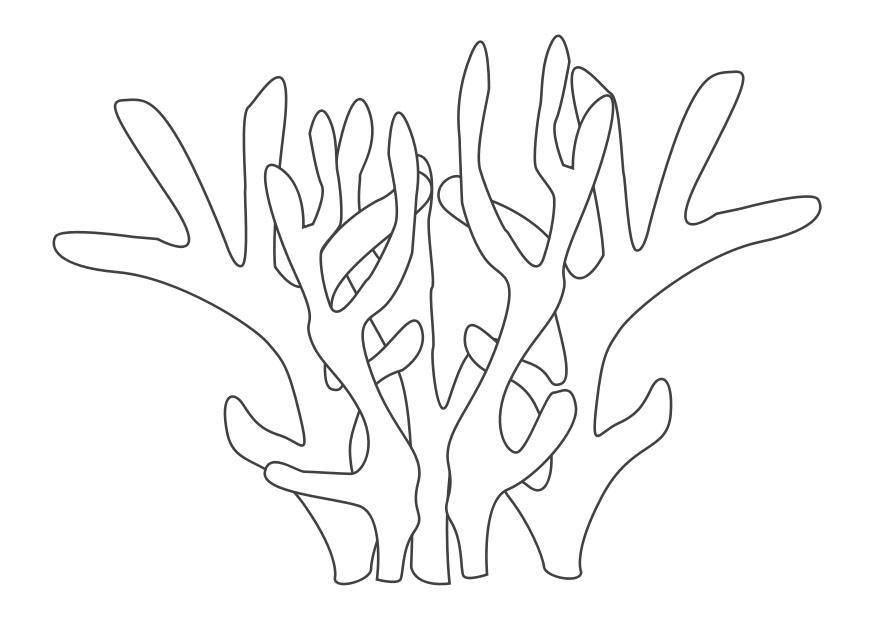 ... and print these Coral coloring pages for free. Coral coloring