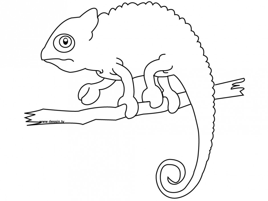 Leo Lionni Coloring Pages Chameleon Coloring Pages